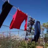 Как вывести зеленку с одежды