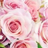 Как сохранить букет роз свежим