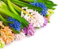 Как оформить цветы